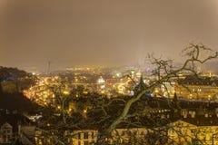 布拉格都市风景在冬天在从布拉格城堡的晚上与在前面的一棵大贫瘠树 免版税图库摄影
