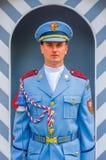 布拉格,捷克- 2015年8月13日, :城堡画象守卫佩带他的分明制服和严肃的脸面护理 库存照片