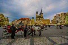 布拉格,捷克- 2015年8月13日, :马和支架在老镇中心等待的游人停放了,美丽 免版税库存图片