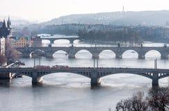 布拉格,捷克- 2016年3月14日:布拉格,查理大桥, Karlov, Manesuv都市风景多数桥梁,老镇地区 在行动的电车 免版税库存图片
