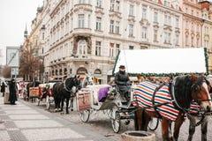 布拉格, 2016年12月13日:圣诞节在布拉格 与推车和马车夫的马等待主要的游人 库存照片