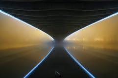 布拉格, CZ - 2014年10月19日:在布拉格附近的中心的Troja桥梁 在伏尔塔瓦河河的霓虹反射 布拉格,捷克共和国 免版税库存图片
