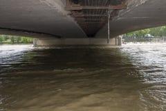 洪水布拉格2013年-伏尔塔瓦河在Hlavkuv桥梁下 免版税库存图片