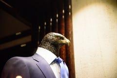 布拉格- 12月07 :与装饰st的衣服的老鹰manequin 库存图片