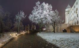 布拉索夫城堡在多雪的冬天夜 库存图片