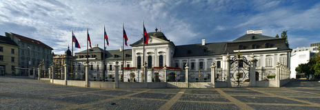 布拉索夫总统宫殿的全景 库存照片