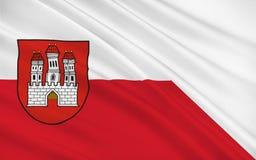 布拉索夫,斯洛伐克旗子  免版税库存照片