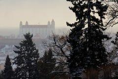 布拉索夫城堡动态标志闪亮指示老被生动描述的最近被更新的上升的屋顶副天空斯洛伐克三对一起耸立传统视图挥动 图库摄影