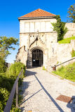 布拉索夫,斯洛伐克城堡 库存照片
