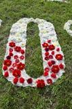 布料和花字母表在公园在草的O上写字 免版税库存照片