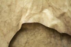 布料皮革自然 库存图片