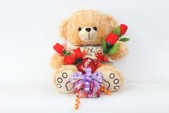 布朗与一朵红色玫瑰和礼物盒的玩具熊 免版税库存图片