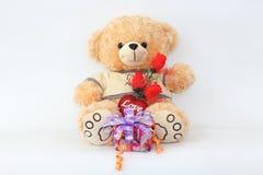 布朗与一朵红色玫瑰和礼物盒的玩具熊 库存照片