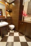 布朗与橙色详细资料的卫生间内部 免版税库存照片