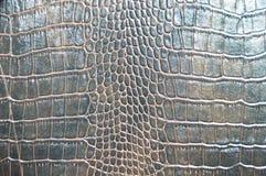 布朗仿制鳄鱼皮肤纹理 库存图片