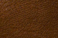 布朗作为背景的皮革纹理 库存图片