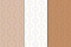 布朗和白色几何装饰品 仿造无缝的集 免版税库存照片