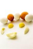 布朗和白鸡蛋和卵黄质 库存图片