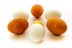 布朗和白鸡蛋和卵黄质 免版税图库摄影