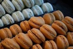 布朗和蓝色macarons 免版税库存图片