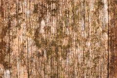 布朗和黄色木纹理 库存照片