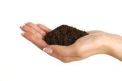 布朗土壤在一只美好的女性手上 免版税库存照片