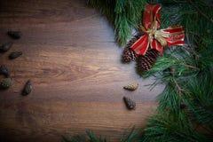 布朗圣诞节与冷杉分支和锥体的假日背景 大量复制空间 免版税库存照片