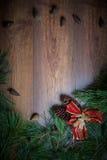 布朗圣诞节与冷杉分支和锥体的假日背景 大量复制空间 图库摄影