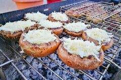 布朗在炭灰格栅被烹调的蘑菇蘑菇 被充塞的蘑菇 免版税库存照片