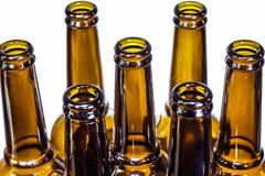 布朗在白色背景的啤酒瓶 免版税库存照片
