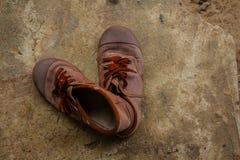 布朗学生鞋子 库存照片