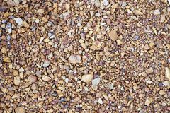 布朗小的石头在背景中 库存图片
