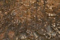 布朗岩石纹理 非常背景详细实际石头 免版税库存照片