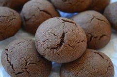 布朗崩裂了曲奇饼用液体巧克力 库存照片