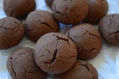 布朗崩裂了曲奇饼用液体巧克力 图库摄影