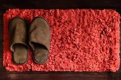 拖鞋和脚刮板 免版税库存图片