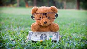 布朗拿着美元钞票的玩具熊 免版税库存图片