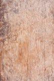 布朗木纹理摘要自然本底空的模板 库存图片