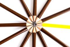 布朗木铅笔安排作为与一个的通报不同 免版税库存照片