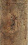 布朗木头纹理 库存照片