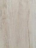 布朗木头 免版税库存照片