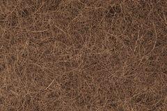 布朗椰子须根背景 图库摄影