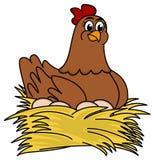 布朗母鸡沉思的鸡蛋 图库摄影