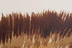 布朗水彩纹理 免版税库存照片