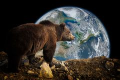 布朗涉及地球背景 库存照片