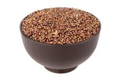 布朗燕麦五谷 免版税库存图片