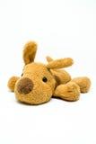 布朗狗被充塞的玩偶 免版税库存图片