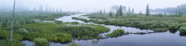 布朗的短文入口有雾的全景 库存图片