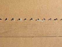 布朗皱纸板纹理背景 库存照片