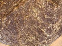 布朗石纹理在海滩夏天 免版税库存照片